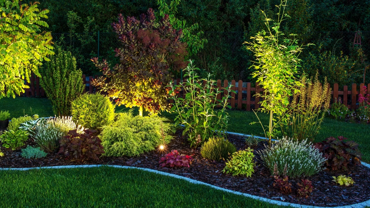 LANDSCAPE LIGHTING IN JACKSONVILLE FL & Landscape Lighting Archives - Rockaway Landscape and Garden Center