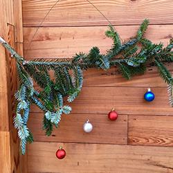 christmas decor jacksonville
