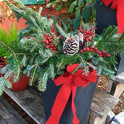 christmas decorations jacksonville beach