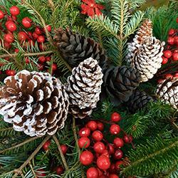 christmas wreath decorations jacksonville beach