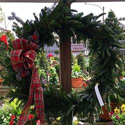 christmas wreath jacksonville beach