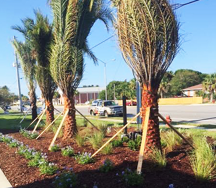 commercial landscaping company jacksonville fl